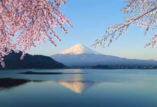 Japan in Cherry Blossom Season