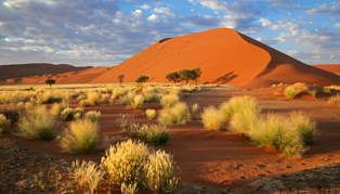 Namib-Naukluft National Park and Sossusvlei