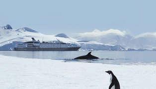 Le Boreal, Antarctica