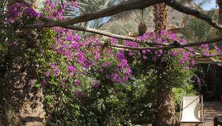 Villa Zagora, Morocco