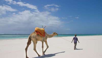 Kenya's South Coast