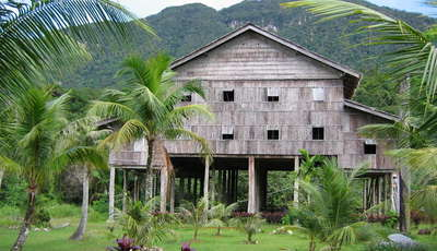 tribal jungle house_400_230