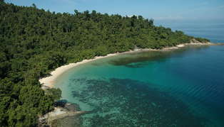 Honeymoon to Borneo