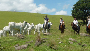 Fazenda Catucaba, Brazil
