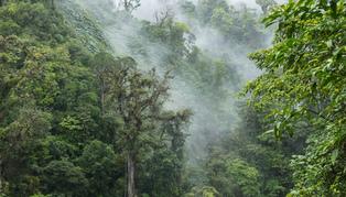 Stylish Adventure to Costa Rica & Nicaragua