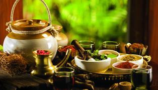 Wellness Escape to Kerala