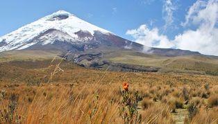 Central & Southern Ecuador