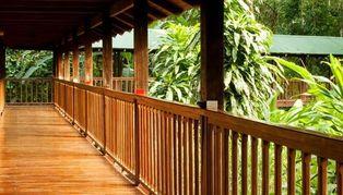 Selva Verde, Costa Rica