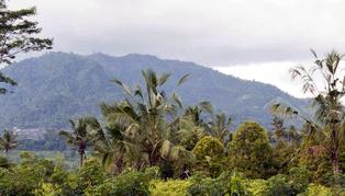 Alila Manggis, Bali