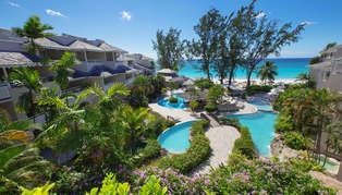 Bougainvillea Barbados, Caribbean