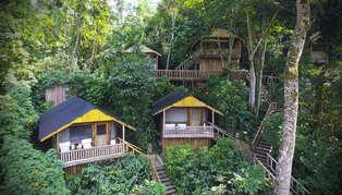 Uganda, Bwindi, Buhoma Lodge