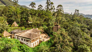 Bwindi Lodge, Bwindi Impenetrable Forest, Uganda, Africa