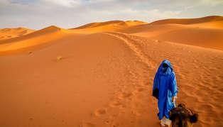 Desert, Morocco