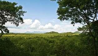 eastern-zimbabwe2_314_179