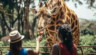 Nairobi, Rift Valley & Western Kenya